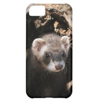 Ferret Face Case For iPhone 5C
