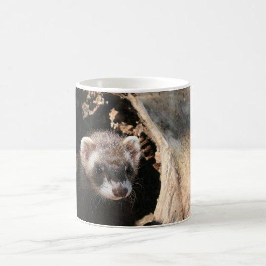 Ferret Face Coffee Mug