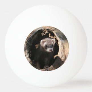 Ferret Face Double Sided Ping Pong Ball