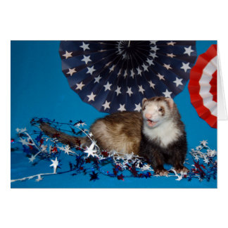 Ferret Fourth of July/Memorial Day Card