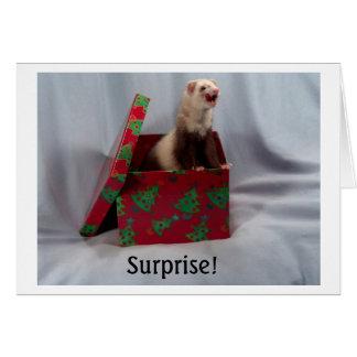 Ferret in a Box Notecards Card
