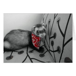 Ferret In Red Bandana Birthday Card