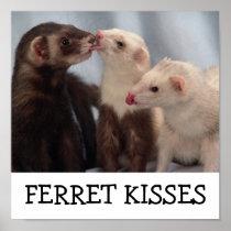 Ferret Kisses Poster