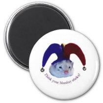 Ferret Monday Magnet