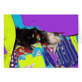 Ferret Nap Birthday Card