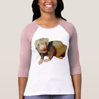 Ferret Picture Gift Tee Shirts