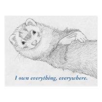 Ferret Postcard - Pandora Owns