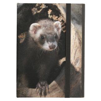Ferret Powis iPad Case