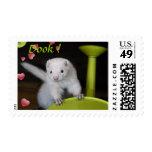 Ferret Spring Stamp