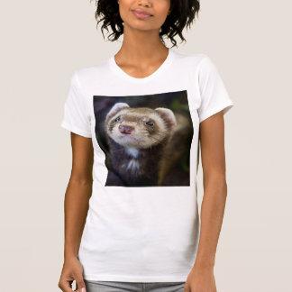 Ferret Tshirts