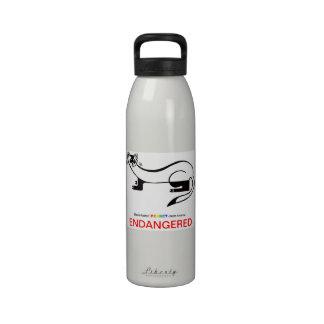 FERRET - Water bottle