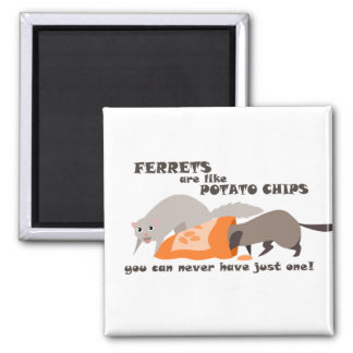 Ferrets are Like Potato Chips Magnet