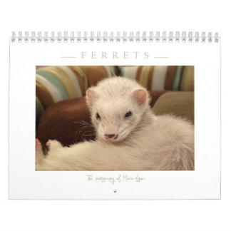 Ferrets Calendar - 3 -