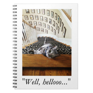 Ferris Mewler is hitting on you. Spiral Notebook