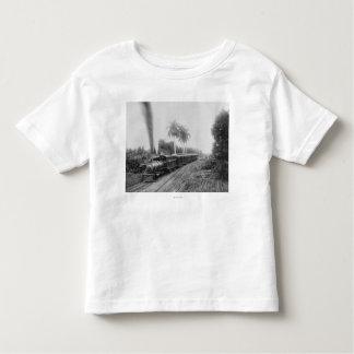 Ferrocarril central americano de la cacerola en poleras