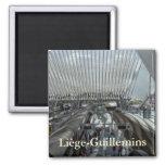Ferrocarril de Liège-Guillemins Imanes Para Frigoríficos