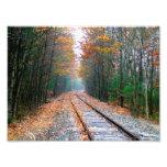 Ferrocarril del otoño cojinete