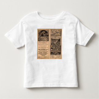 Ferrocarril del valle de Lehigh T Shirts
