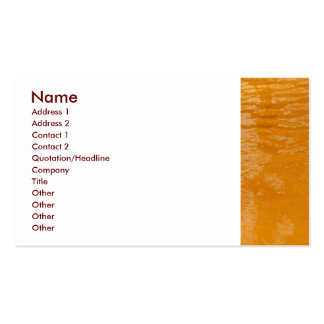 Ferrous Thermal Water Business Card