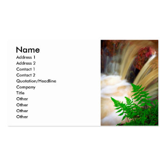 Ferrous thermal water business card templates