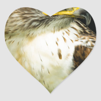 Ferruginous Hawk Heart Sticker
