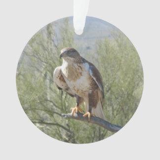 Ferruginous Hawk Ornament