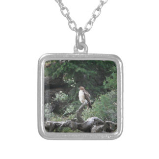 Ferruginous Hawk Silver Plated Necklace