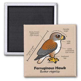 Ferruginous Hawk Statistics 2 Inch Square Magnet