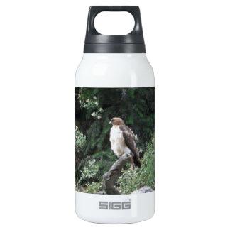 Ferruginous Hawk Thermos Bottle