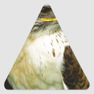 Ferruginous Hawk Triangle Sticker