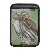 Ferruginous Pygmy-Owl, Glaucidium brasilianum, 3 iPad Mini Sleeve