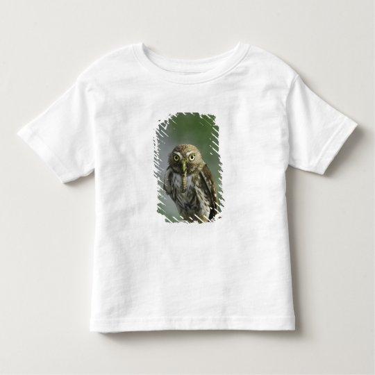 Ferruginous Pygmy-Owl, Glaucidium brasilianum, 7 Toddler T-shirt