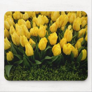 Festival adaptable del tulipán - cojín de ratón 27 alfombrillas de ratones