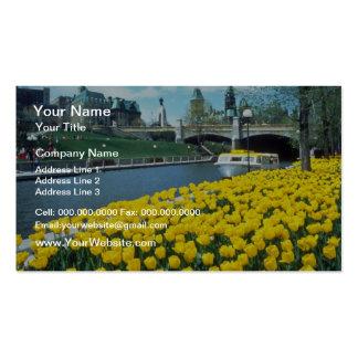 festival canadiense amarillo del tulipán, canal de tarjetas personales