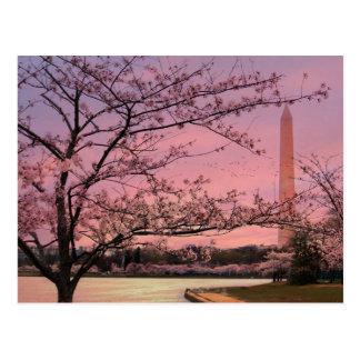 Festival de la flor de cerezo del monumento de tarjetas postales