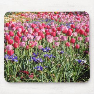 festival del mousepad de los tulipanes