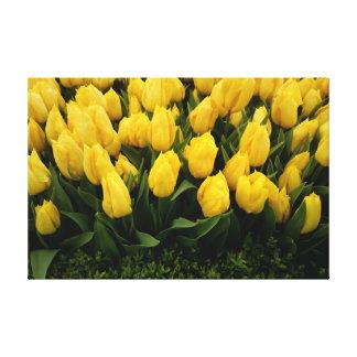 Festival del tulipán - impresión de 27 lonas impresiones en lienzo estiradas