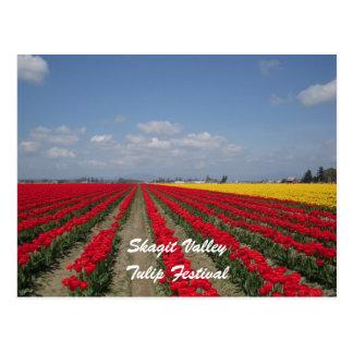 Festival del tulipán, valle de Skagit, festival Tarjeta Postal