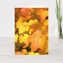 Festive Fall Colors Card