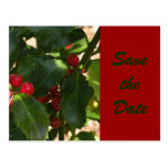 Festive Holly Save the Date Postcard