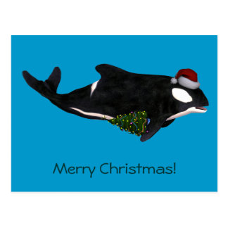 Festive Killer Whale Postcard
