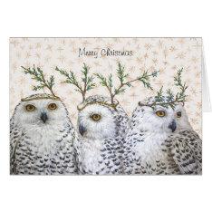Festive Owls On Snow Christmas Card at Zazzle