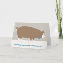 Festive pig greetings card