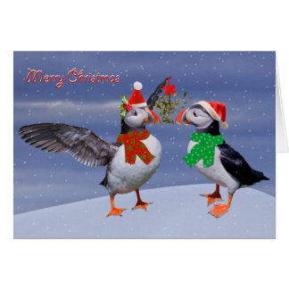Festive Puffins Christmas Card