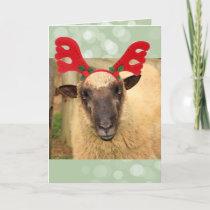 Festive Reindeer Sheep Christmas Holiday Card