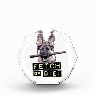 Fetch or Die! Acrylic Award