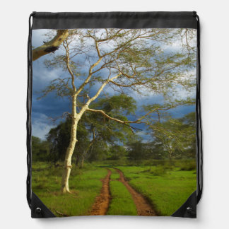 Fever Tree (Acacia Xanthophloea) By Dirt Track Cinch Bags