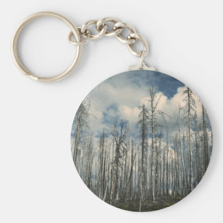 Few leaves on tall trees basic round button keychain