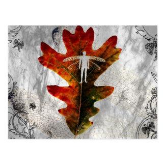 Fey-Leaf Silhouette - Postcard 7