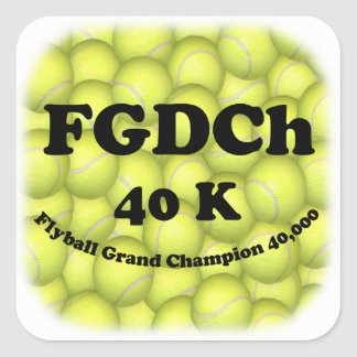 FGDCh 40K, Flyball Master Champion Square Stickers